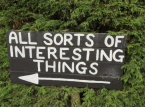 Interesting Things
