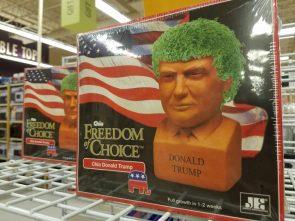 Donald Trump Chia