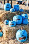 Meseeks Pumpkins