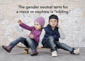 Nibling
