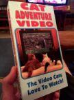 Cat Adventure Video