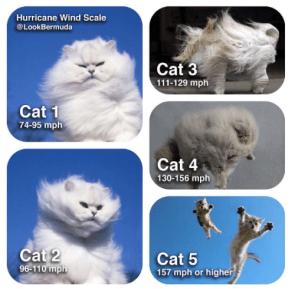 Hurricane Cat Wind Scale