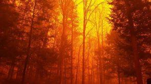 2016 Great Smokey Mountain Fire