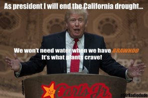 As president, Trump will end the California drought.jpg