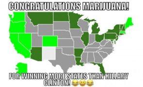 Congrat Weed