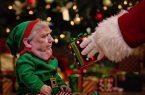 Trump as an elf