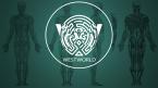 Westworld Wallpaper