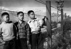 George Takei wrote an essay on the internment of his family during WW2