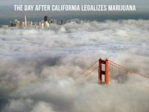 the day after california legalizes marijuana