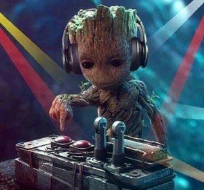 DJ Groot
