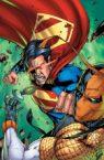 Superman vs Deathstroke