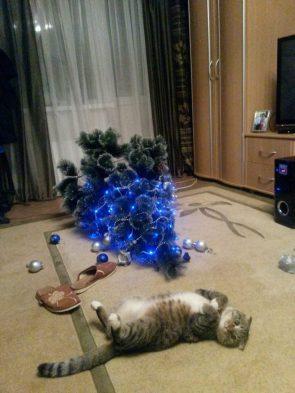 Christmas Cat Tree
