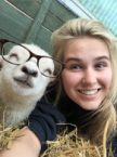 Happy Farm Animal In Glasses