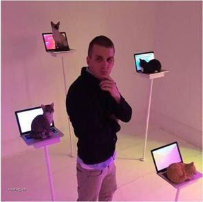 laptop cat exhibit