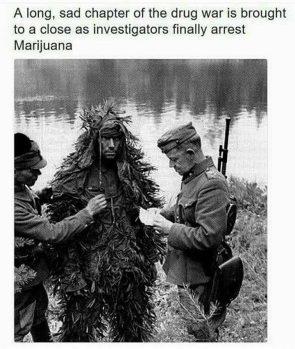 a long sad chapter of the drug war