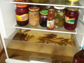 russian refrigerator