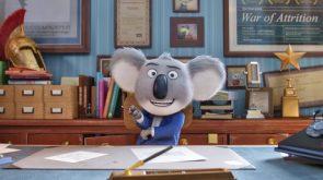 Con Man Koala