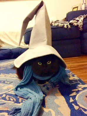 FF Cosplay Cat