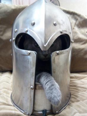 Solder cat