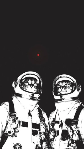 red dot space cats