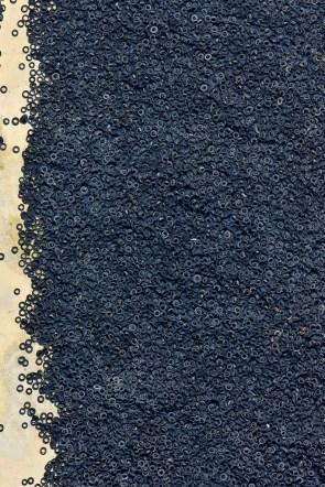 tire beach