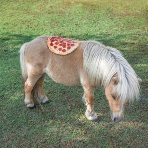 Pizza Horse