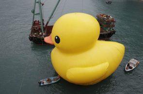 Massive Duck