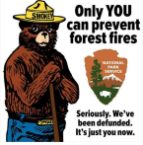 only YOU can prevent firest fires
