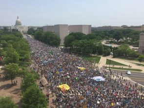 2017 Environmental Protestors