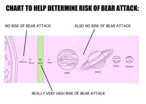 Chart to help determine risk of bear attack
