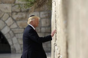 Donald Trump Molesting A Wall