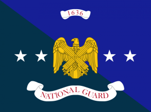 Flag of the United States National Guard
