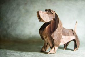 Folded Dog
