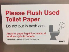 Please flush used toilet paper