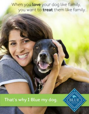 That's why I Blue My Dog
