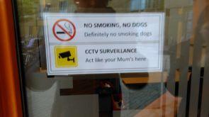 no smoking, no dogs.jpg