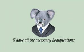 I have all the necessary koalafications