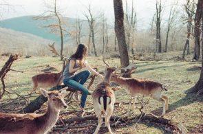 Stefania Jane feeding deer