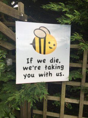 if we die