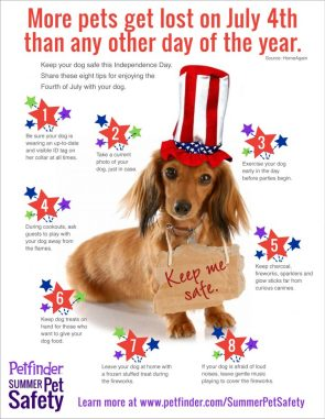 More dogs get lost on July 4th
