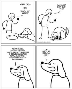 I'm good at being a dog.
