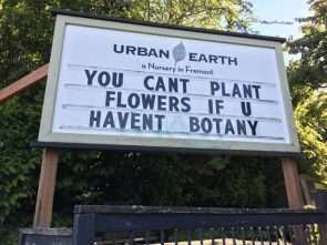 You can't plant flowers if you haven't botany