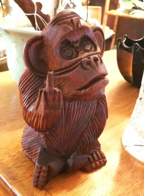 Middle Finger Monkey