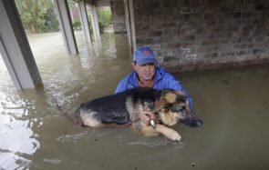 Joe Garcia carries his dog Heidi from his flooded home as he is rescued from rising floodwaters on Aug 28 David J Phillip Associated Press