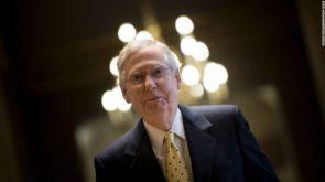 Turtle Senator Mitch McConnell