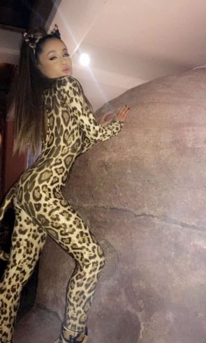 Ariana Grande as a cat lady
