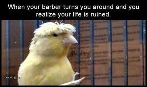 barber face
