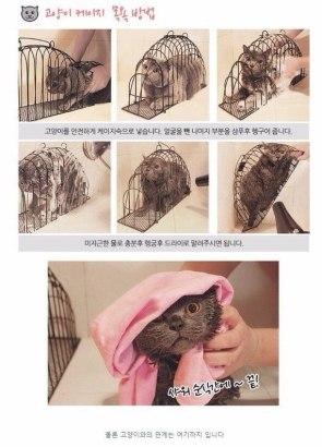 Cat Washing Cage