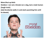 young sheldon in a nutshell