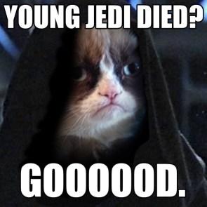 Hateful Cat.jpg